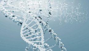 GENÉTICA, ADN, GENOS MÉDICA