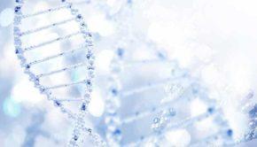 ADN, MEDICINA PERSONALIZADA, CLINICA MAYO