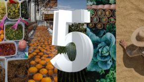 IBM, 5 IN 5, INNOVACIONES